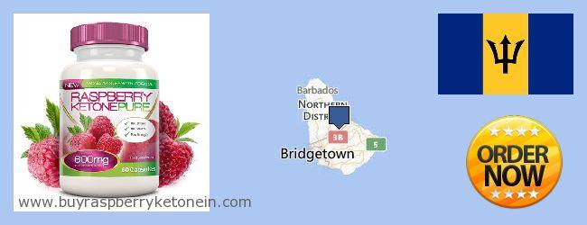 Nereden Alınır Raspberry Ketone çevrimiçi Barbados