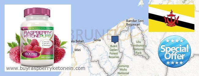 Nereden Alınır Raspberry Ketone çevrimiçi Brunei