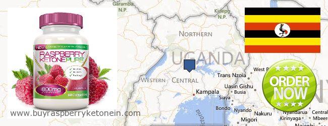 Nereden Alınır Raspberry Ketone çevrimiçi Uganda